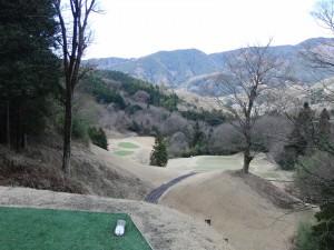 taiheiyou sagami (13)